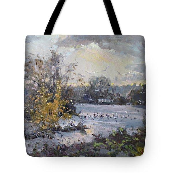 Cloudy Sunset In Niagara Falls River  Tote Bag