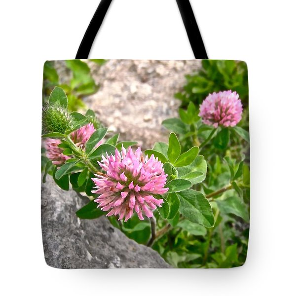 Clover On The Rocks Tote Bag by Stephanie Moore