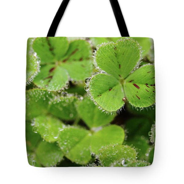 Cloverland Frosted Over Tote Bag