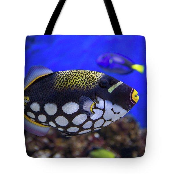 Clown Trigger Fish Tote Bag