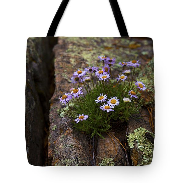 Clump Of Asters Tote Bag