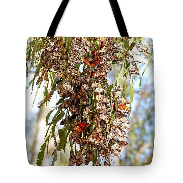 Clustered - Monarch Butterflies Tote Bag