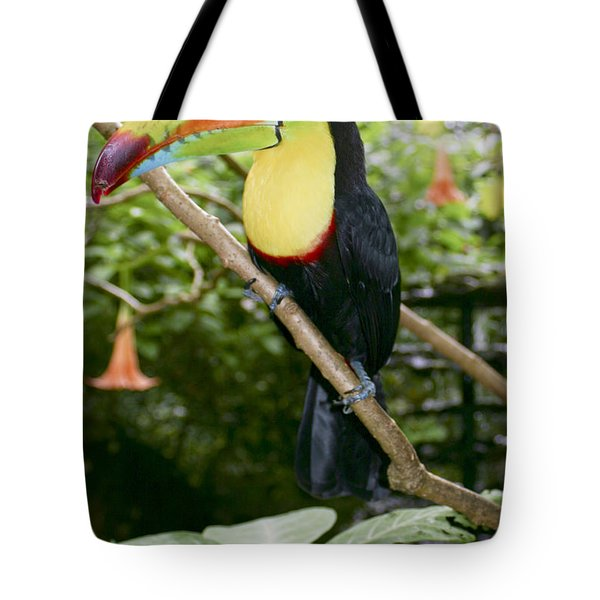 Clyde Tote Bag by Dolly Sanchez