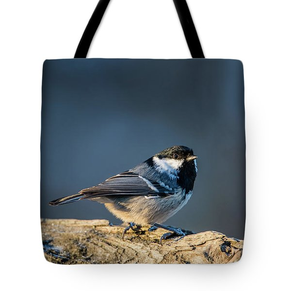 Tote Bag featuring the photograph Coal Tit's Colors by Torbjorn Swenelius