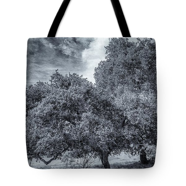 Coast Live Oak Monochrome Tote Bag