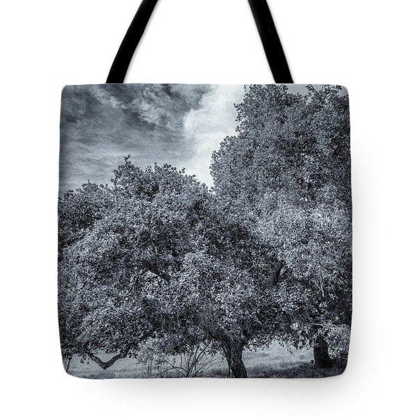 Coast Live Oak Monochrome Tote Bag