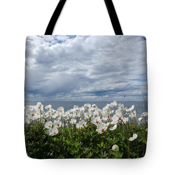 Coastal Backlit Anemones Tote Bag