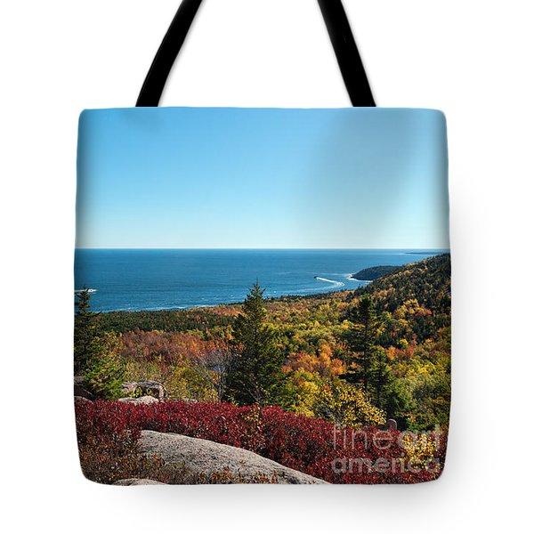 Coastal Color Tote Bag by Sharon Seaward
