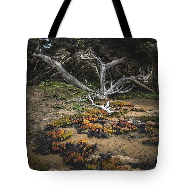 Tote Bag featuring the photograph Coastal Guardian by Jason Roberts