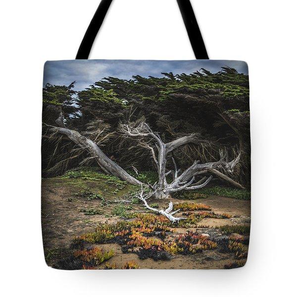 Coastal Guardian Tote Bag