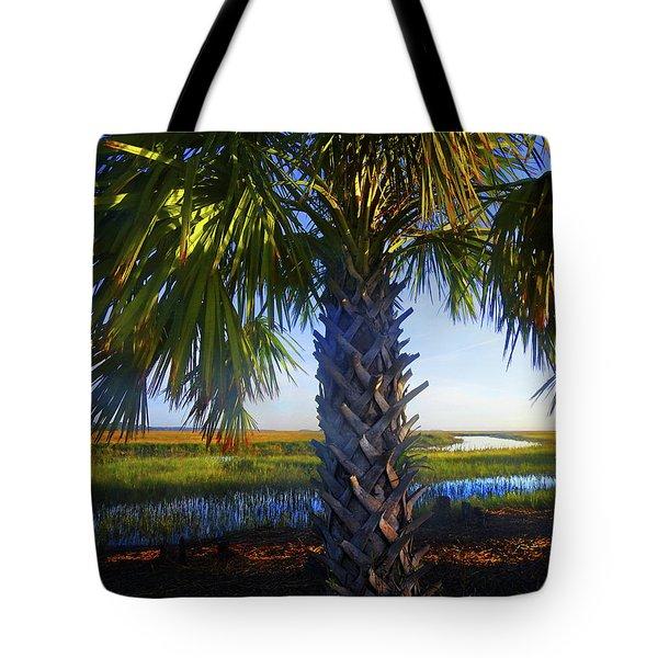 Coastal High Tide  Tote Bag