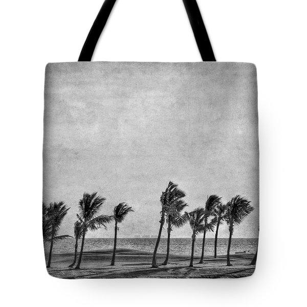 Coastal Winds Tote Bag