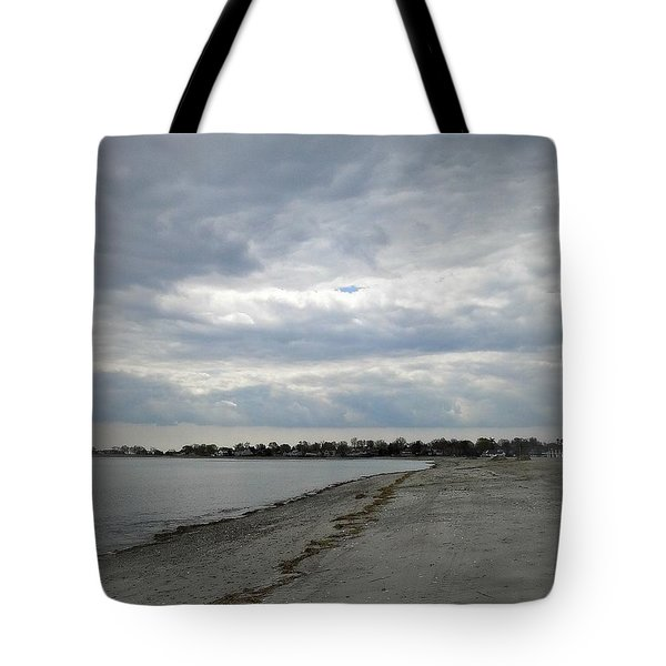 Tote Bag featuring the photograph Coastal Winter by Kristine Nora