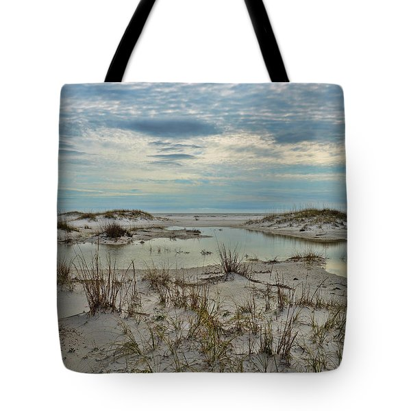 Coastland Wetland Tote Bag
