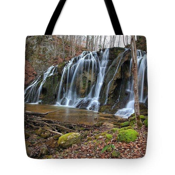 Cobweb Falls Tote Bag