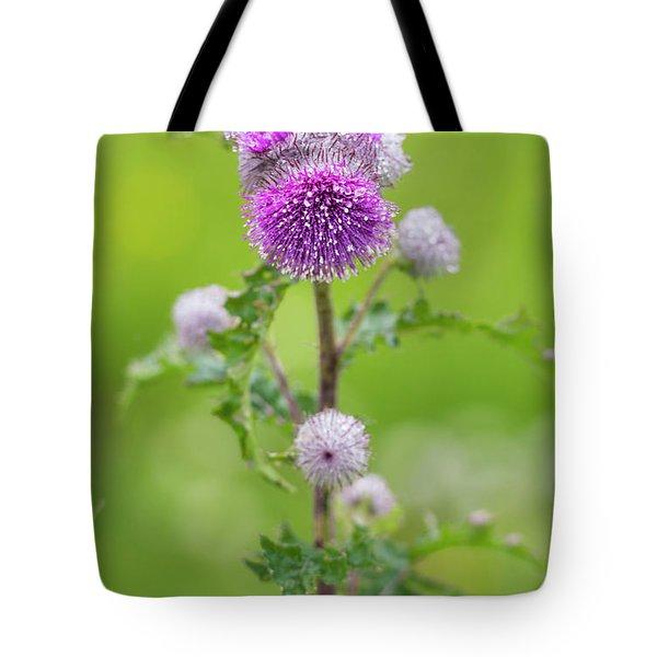 Cobweb Thistle Tote Bag