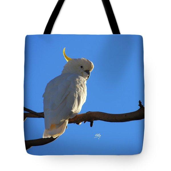 Cockatoo Tote Bag by Linda Hollis