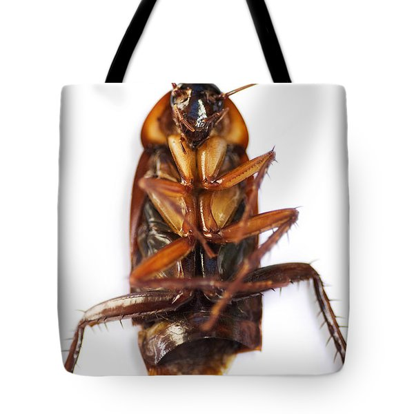 Cockroach Carcass Tote Bag