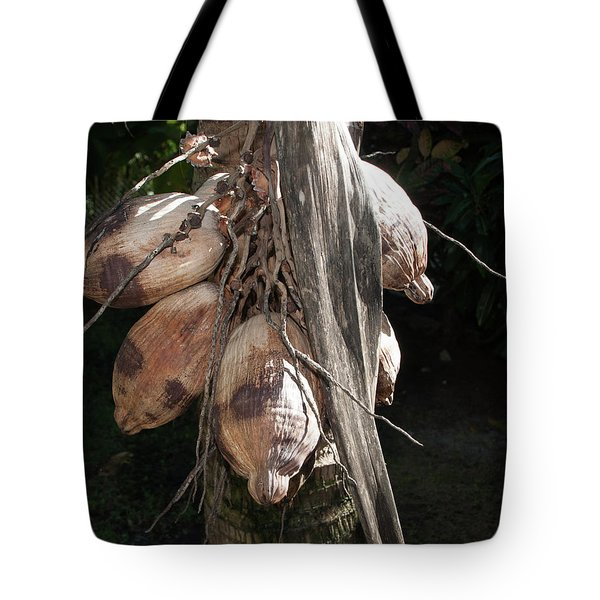 Coconut 1 Tote Bag