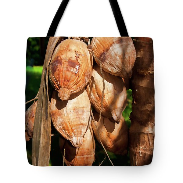 Coconut 3 Tote Bag