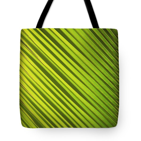 Coconut Palm Tote Bag by Brandon Tabiolo - Printscapes