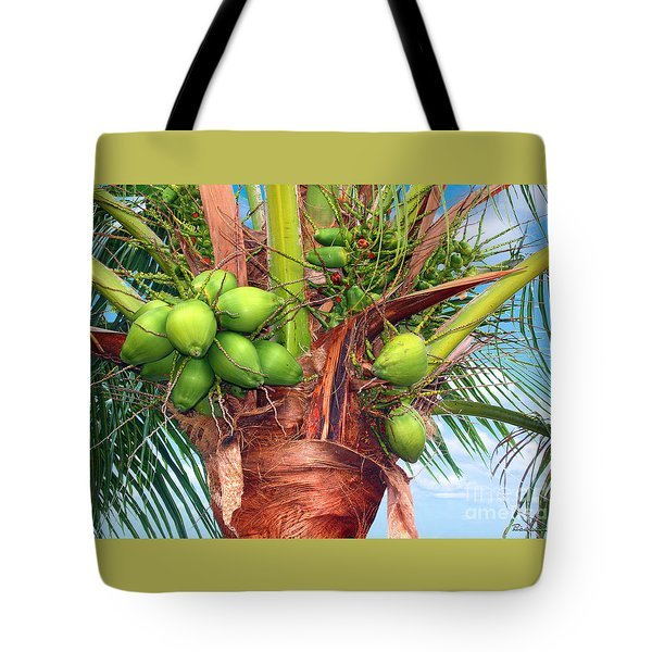 Coconut Palm Treasure Coast Florida C1 Tote Bag