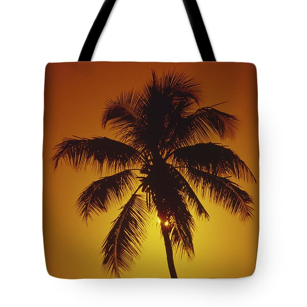 Coconut Palm Tree Sunset Tote Bag