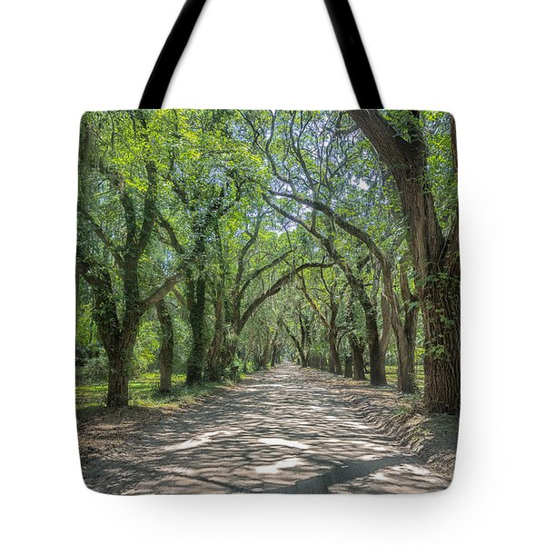 Coffin Point Shadows Tote Bag