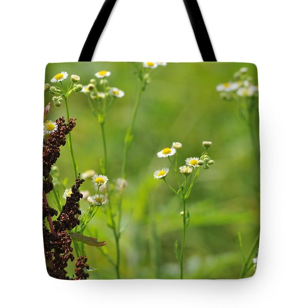 Cohabitation Tote Bag by Misha Bean