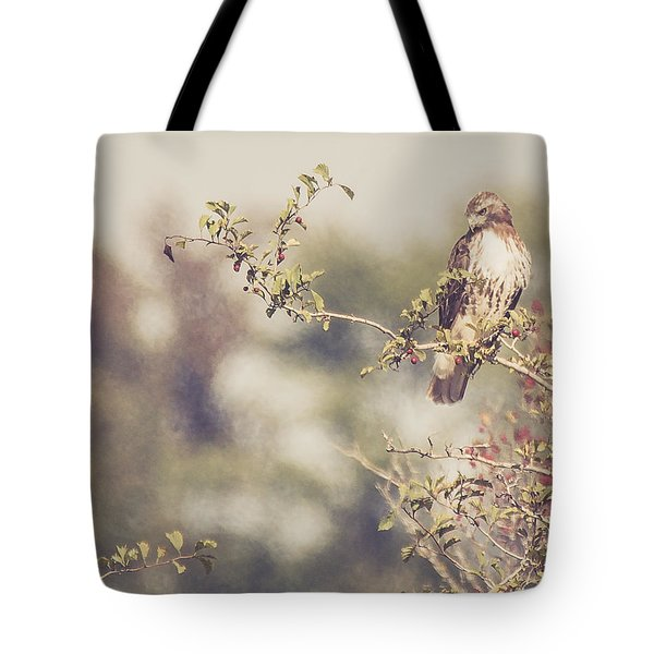 Coign Of Vantage Tote Bag