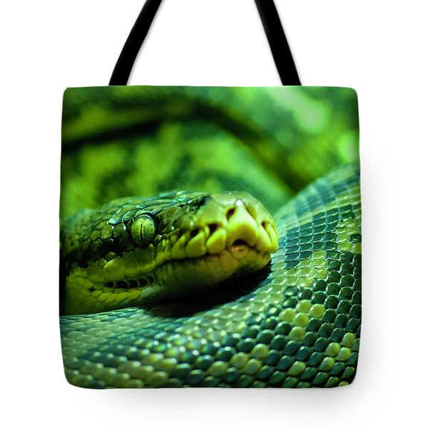 Coiled Calm Tote Bag