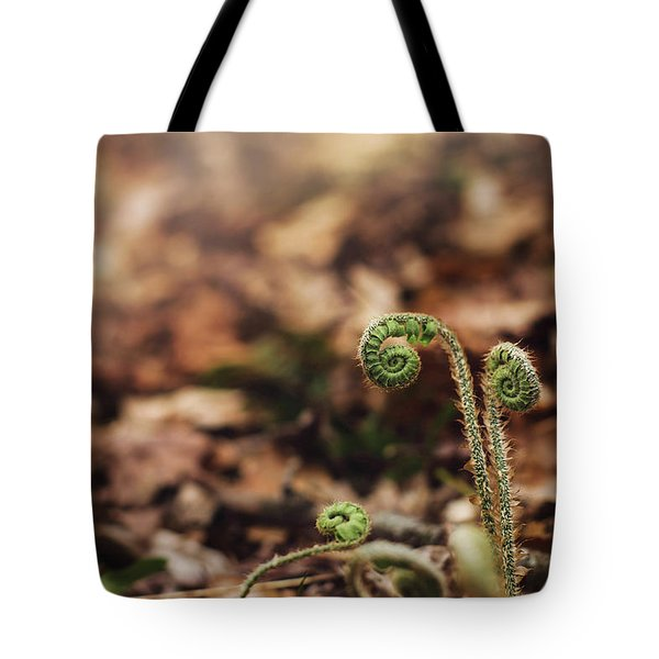 Coiled Fern Among Leaves On Forest Floor Tote Bag