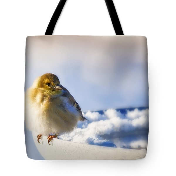 Cold American Goldfinch Tote Bag