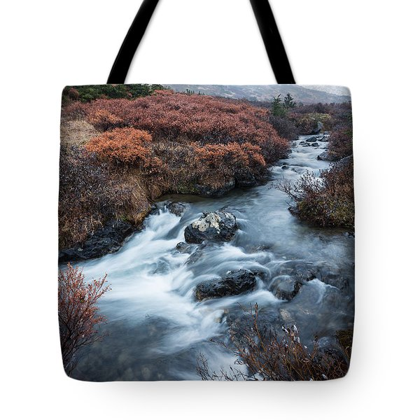 Cold Creek In Autumn Tote Bag