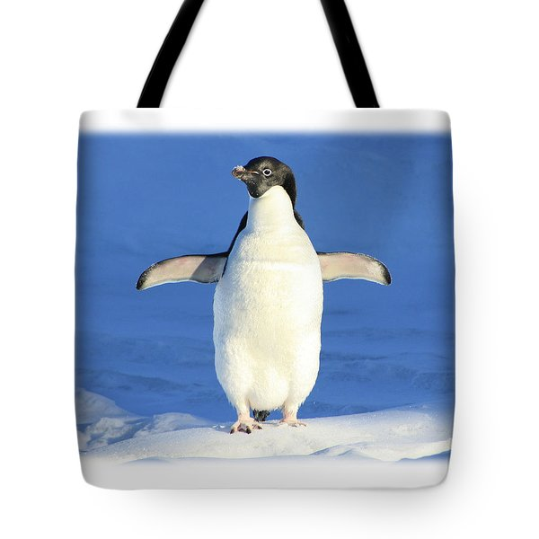 Cold Feet - Penquin In The Snow Tote Bag
