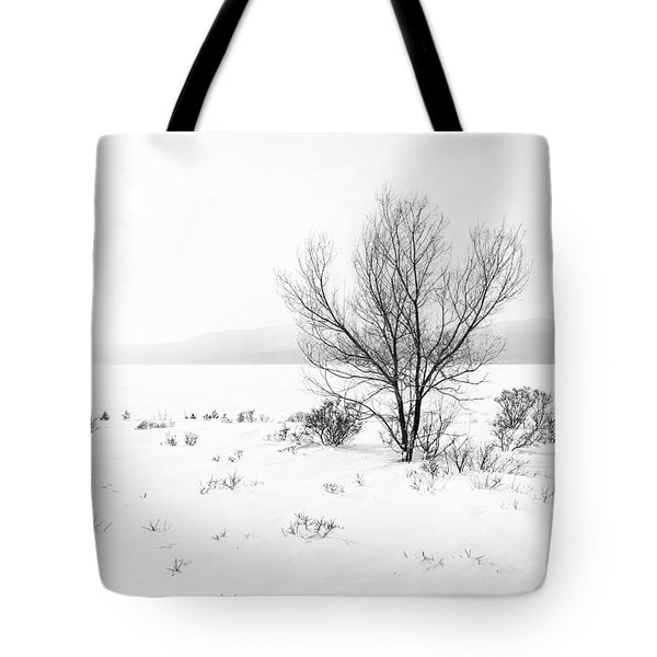 Cold Loneliness Tote Bag by Hayato Matsumoto
