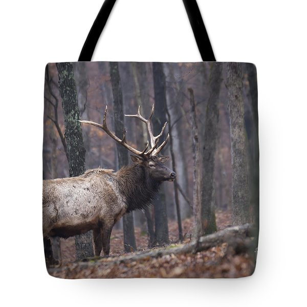 Chilly Misty Morning Tote Bag
