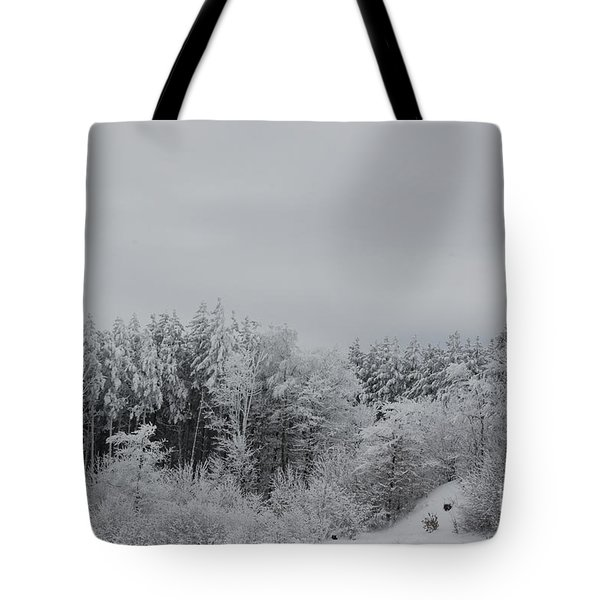 Cold Mountain Tote Bag by Randy Bodkins