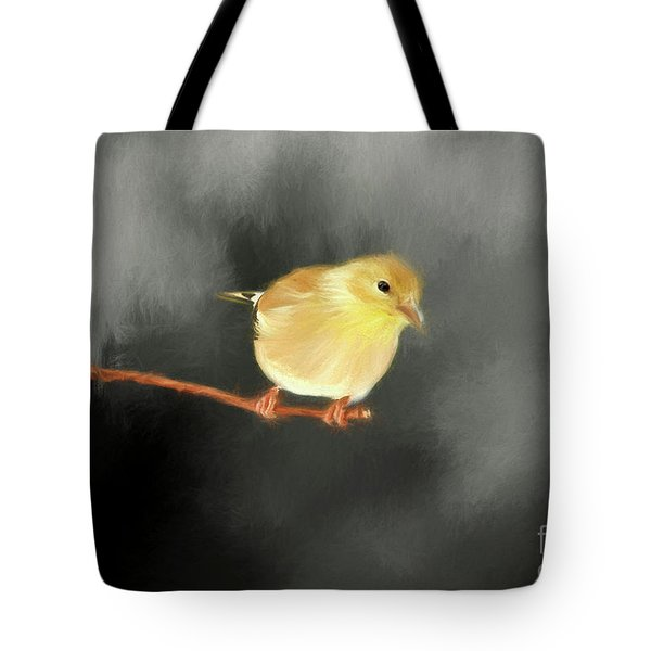 Cold Winters Day Tote Bag