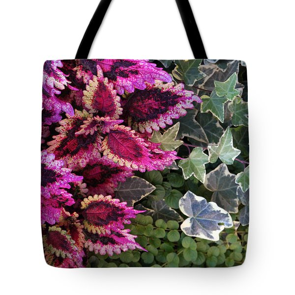 Tote Bag featuring the mixed media Coleus And Ivy- Photo By Linda Woods by Linda Woods