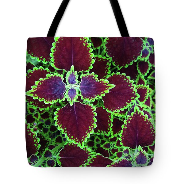 Coleus Leaves Tote Bag by Nareeta Martin