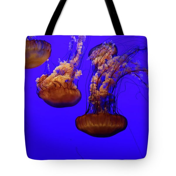 Collection Of Jellyfish Tote Bag