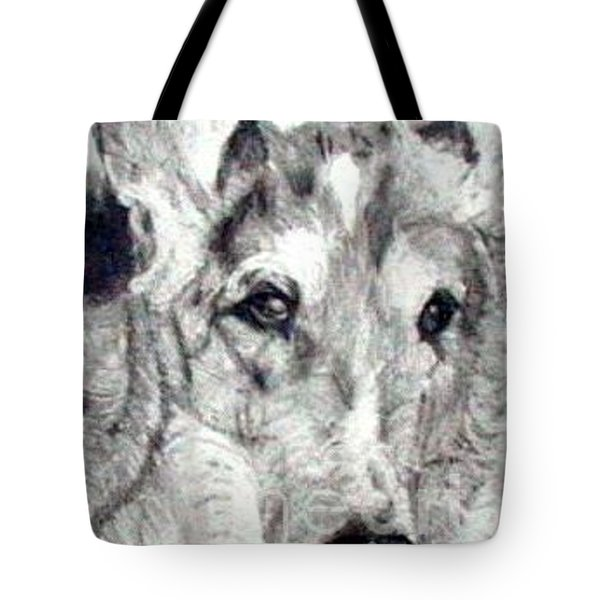 Collie Smooth Lover Tote Bag