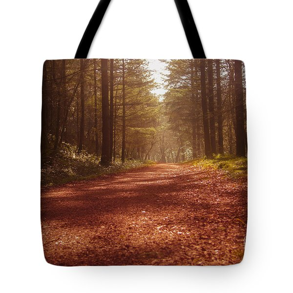 Colligan Autumn 2 Tote Bag