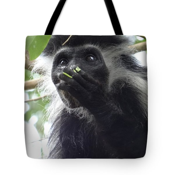 Colobus Monkey Eating Leaves In A Tree 2 Tote Bag
