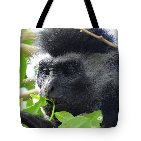 Colobus Monkey Eating Leaves In A Tree Close Up Tote Bag