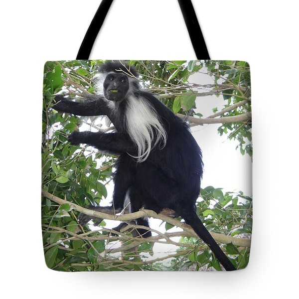 Colobus Monkey Eating Leaves In A Tree Tote Bag