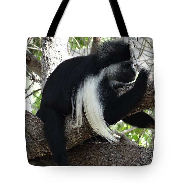 Colobus Monkey Resting In A Tree Tote Bag