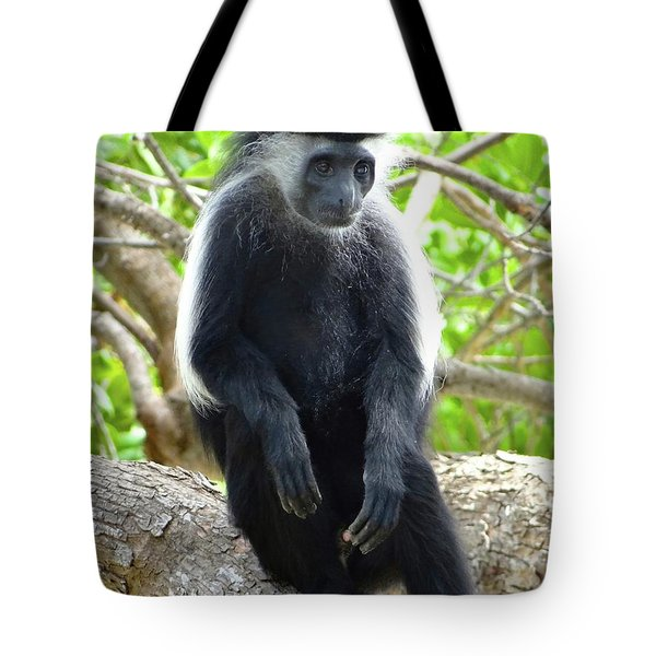 Colobus Monkey Sitting In A Tree 2 Tote Bag