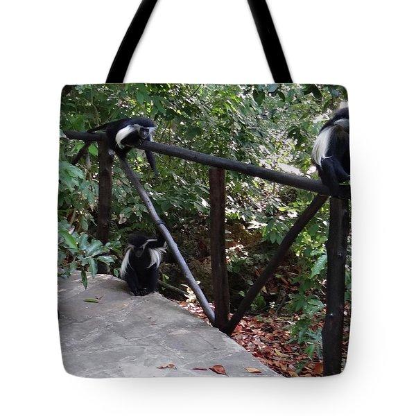 Colobus Monkeys At Sands Chale Island Tote Bag